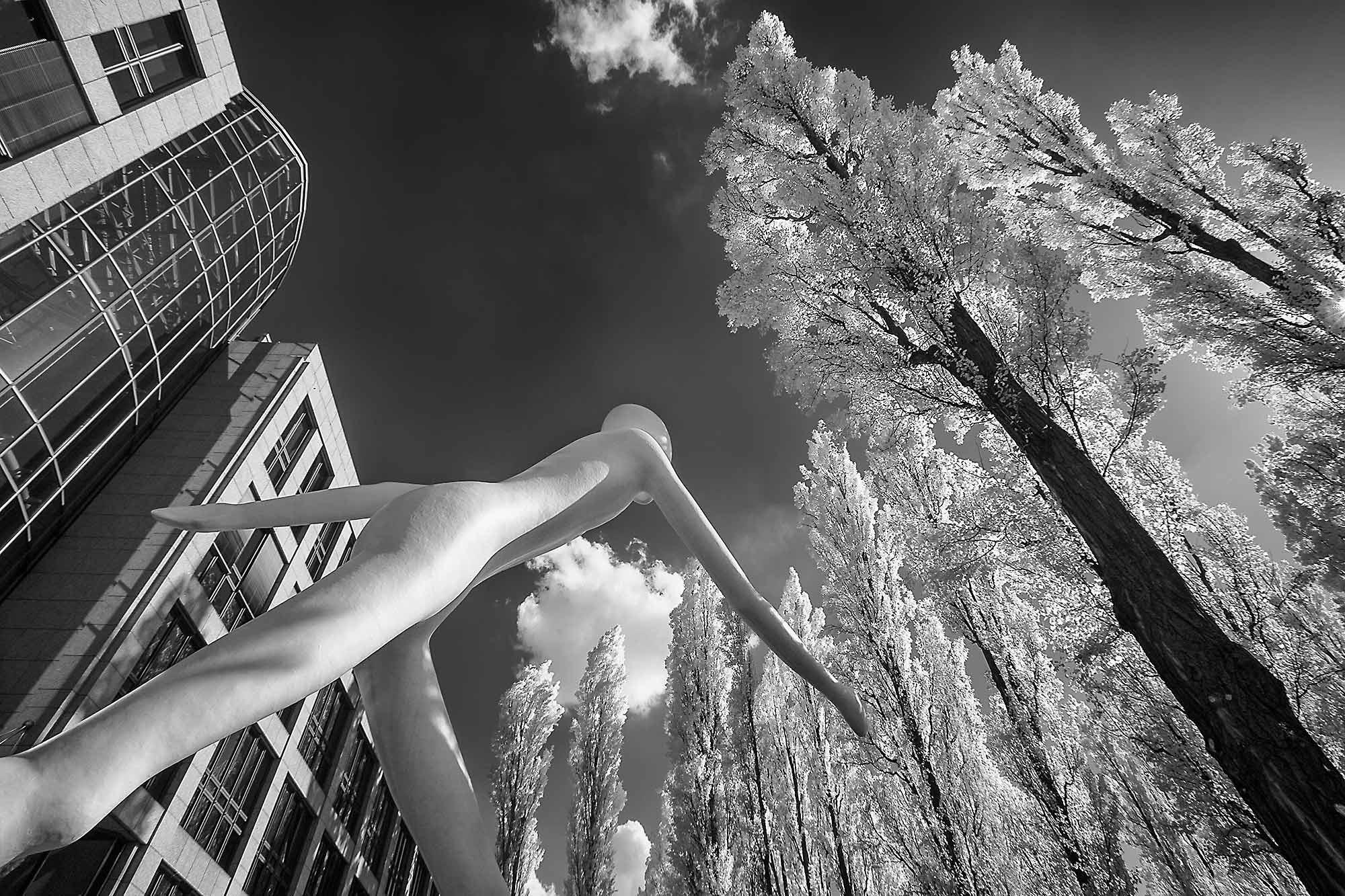 wp-Galerie-infrarot-063